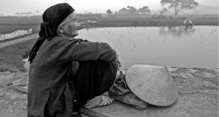 Tho_Que_Huong_Image_18